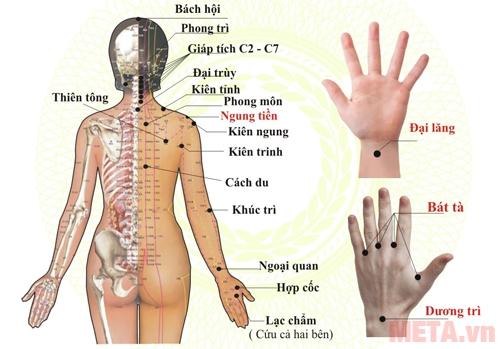 Hướng dẫn sử dụng máy xông cứu ngải chữa bệnh tê bàn tay và teo cơ cánh tay