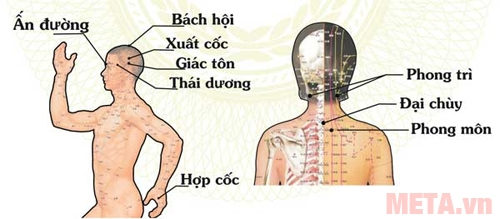 Hướng dẫn sử dụng máy xông cứu ngải chữa bệnh đau đầu