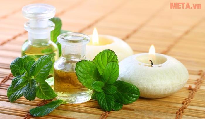 Tinh dầu bạc hà cũng là một trong những loại tinh dầu đuổi muỗi tốt nhất hiện nay.