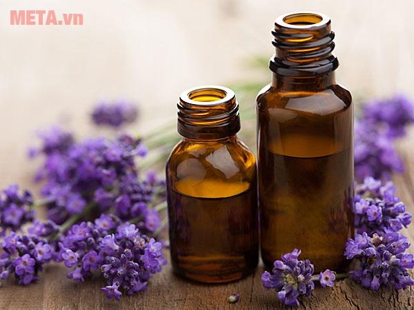 Tinh dầu oải hương mùi thơm rất dễ chịu.