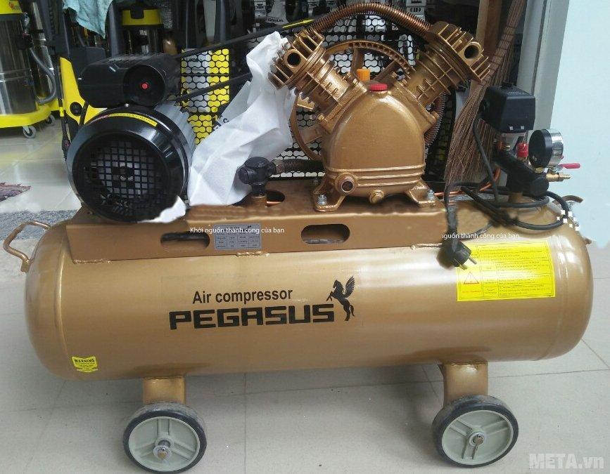 Pegasus TM-V-0.25/8